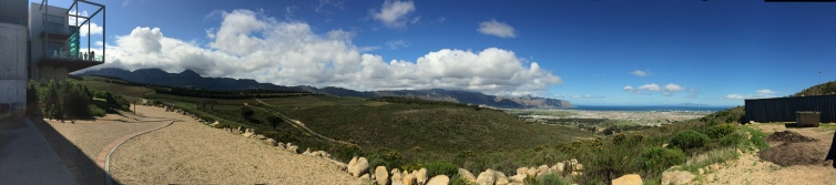 Grand horizons: the view over False Bay from Paul Boutinot's ambitious biodynamic project at Waterkloof.